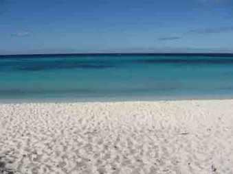 nelboscodelladea_meditazionespiaggia